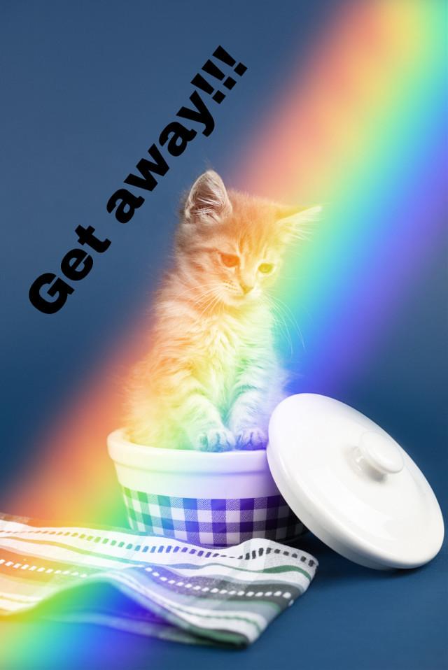 #kittylove. #rainbow.  #love yall❤️❤️❤️