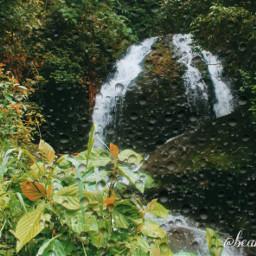 naturesbeauty naturephotography hikingadventure greenday freetoedit srcrainonme rainonme