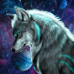 galaxywolf galaxyedit galaxy spaceart space wolfart wolf