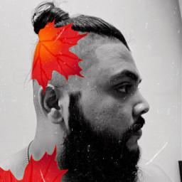 beard beardmodel beardworld beardgang beards beardlove bear beardstyle beardboy beardguy freetoedit