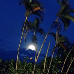 freetoedit ontheroad moon bluesky bluenight