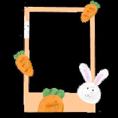 polaroid frame bunny rabbit carrot cute polcos easter border freetoedit