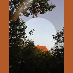 interesting nature remix sky tree roof effect picsartedit picsartphoto try circle circleframe freetoedit freedom