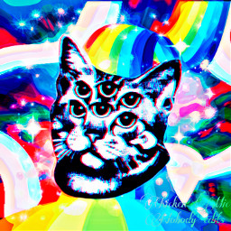 catart cats trippy freetoedit