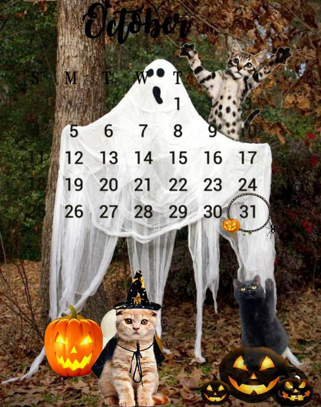 #octubre #octuber #october2020 #octoberchallenge #octobermoon #octubrerosa #mesdeoctubre #octubredehorror #octubredehallowen #hallowen #hallowin #hallow2020