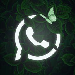 whatsapp whatsapplogo glowing whatsappglowinglogo alena_rey_686 green white greenandwhite glow glowinginthedark butterfly leaves freetoedit