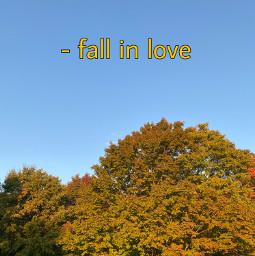 fallinlove happyfallyall freetoedit