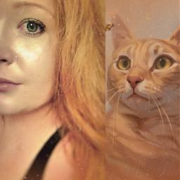 orange kitty selfie gingerhair mix freetoedit ccorangeaesthetic orangeaesthetic