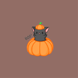 halloween orange fall color vintage aesthetic cat pumpkin scary spooky viral famous trending trend zoe avani charli addison freetoedit