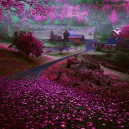 myedit curvestool purple remixit freetoedit