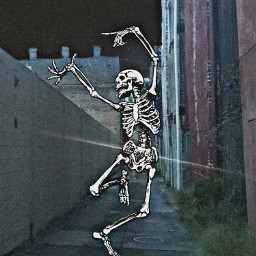 wallpaper wallpapers halloween halloweenwallpaper halloweenwallpapers skeleton 31daychallenge freetoedit
