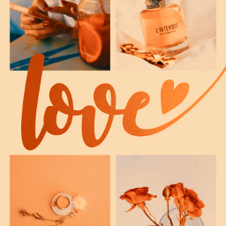 ccorangeaesthetic orangeaesthetic thingsthatmakemehappy orangelove collage