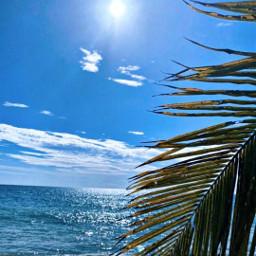 beach sunnyday skylover oceanview hometown naturephotography freetoedit