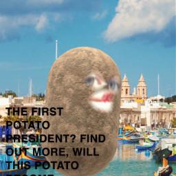 vogue potatoe lol