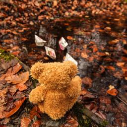 herbst kuschelbär gefalleneblätter bunteblätter autumn fallenleaves colorfulleaves pcautumnflatlay autumnflatlay