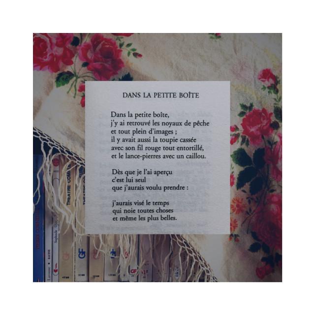 . . . . . #automne #stilllife #darkacademia #stilllifephotography #photography #retrovibes #vintage #stilllifegallery #autumnvibes #tumblrfeed #autumncolors #aestheticphotography #slowliving #moodygrams #livemoremagic #postitfortheaesthetics #cottagecore #autumnvibes🍁 #retroaesthetic #softaesthetic #vintageaesthetic #softindie #warmvintage #indiephoto #aestheticallypleasing #autumn
