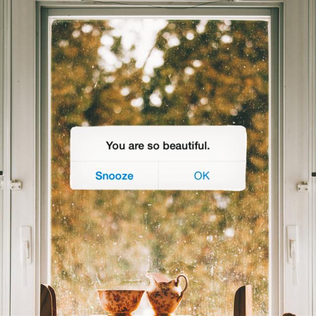 #unsplash #message #messagebubble #reminder #text #quote #fall #fallseason #wallpaper