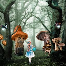 fairytale mushrooms fantasy fantasyart imagination freetoedit
