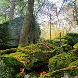 naturephotography adventuretime hiking autumncolors autumnvibes rocks trees woodland freetoedit
