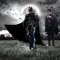 batman robin inspirational creative recreation interesting brother