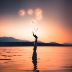 freetoedit beach sunset sea summer arm butterfly butterflies ocean crete greece vacation glow glowing glowinginthedark digitalart art photography stunning interesting nature sky travel outstanding breathtakingviews