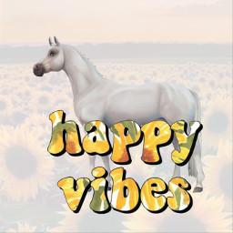 summer sub sun sunflower horse ssousercrew love madebyme noremix hollydays sso ssoedit ssoanimal freetoedit