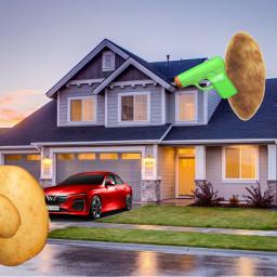 potatoe niallhoran freetoedit