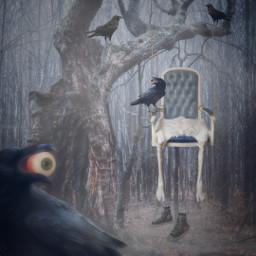 freetoedit halloween spooky creepy creepyforest foggyday crow birds