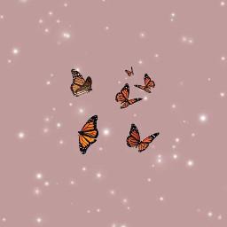 freetoedit aesthetic butterflies butterfly butterflys glitter glitterwithbutterflies wallpaper overlay butterfliesandglitter pink pinkaesthetic aestheticbutterflies aestheticbackground