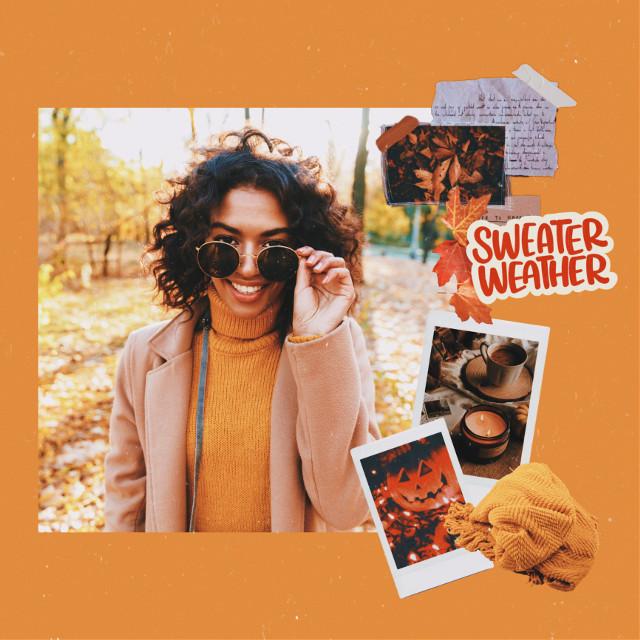 #freetoedit #fall #fallvibes #fallseason #fallcollage #orangeaesthetic #sweaterweather