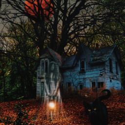 heypicsart halloweenscream hauntedhouse ghost blackcat myedit madewithpicsart picsarteffects myoriginalphoto freetoedit