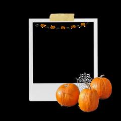 freetoedit sticker overlay overlays editoverlay editoverlays tumblrsticker shadowoverlay remixit edithelp fall pumpkins halloween autumn halloweensticker halloweenoverlay frame pictureframe photoframe halloweenframe
