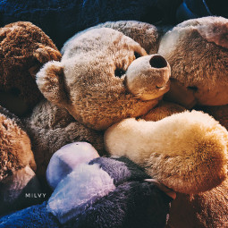 shotoniphone myphoto myshot toys teddybear freetoedit