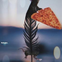 ratpizza freetoedit