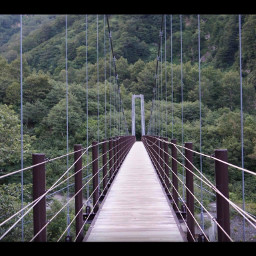 freetoedit japan bridge woodenwalkway nature mountains trees forest gifumountains