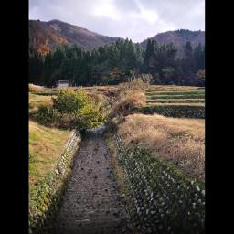 freetoedit japan trench fields stonewalled mountains forests gifumountains villageoutskirts shirakawago