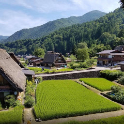freetoedit japan ricepaddyfields nature mountains forest shirakawago shirakawagovillage culturalvillage gifumountains gifuprefecture