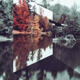freetoedit mastershoutout surreal photomanipulation perspectivetool
