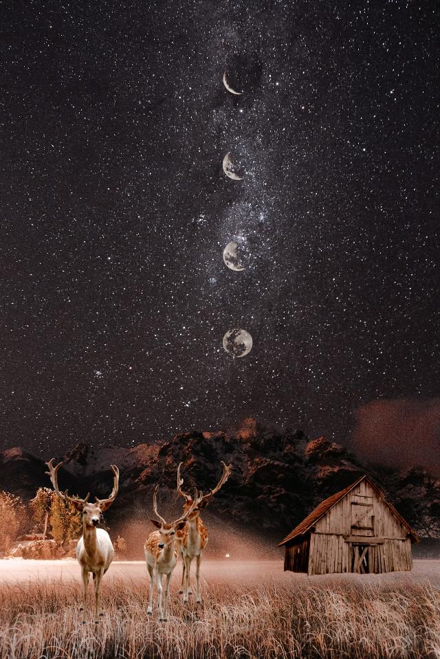 #reindeer  #moons #house #galaxy #stars #remixit #freetoedit
