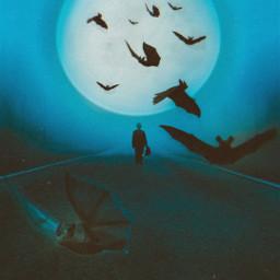 bats fullmoon moon halloween freetoedit