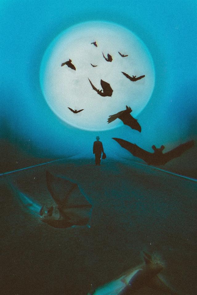 #bats #fullmoon #moon #halloween