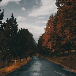 naturephotography atumntime road cloudsandsky naturecolours freetoedit