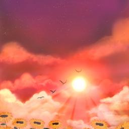 digitalart illustration sunset art drawing