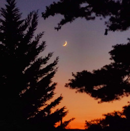 sunset moon myedit myclick nofilters virginia endofabeautifulday freetoedit
