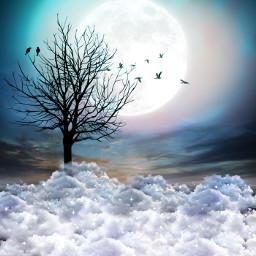 nature mystical dreamdestinations dream freetoedit