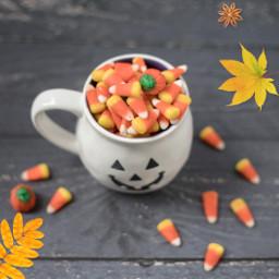 sweets auttum halloween freetoedit unsplash