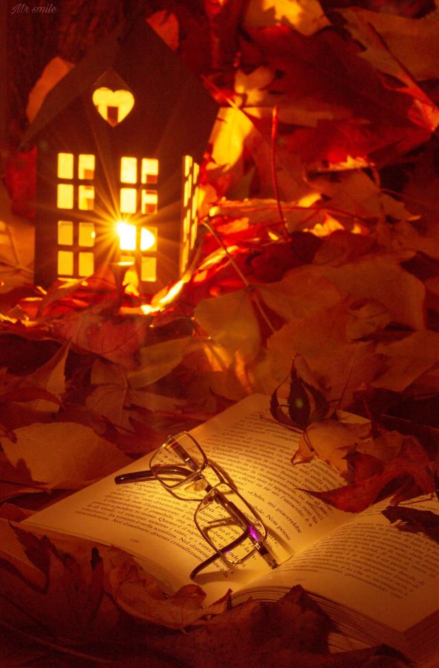 #photography #autumn #fall #leaves  #pcmyfavoritebook #myfavoritebook https://picsart.com/i/340915551048201?challenge_id=5f8d6b5caa4c2076873761ea