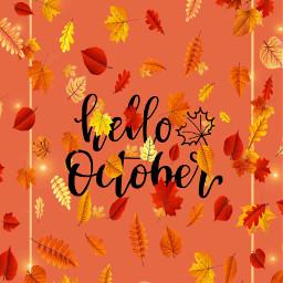 autumn fall lovinglife freetoedit srcautumnleaves autumnleaves