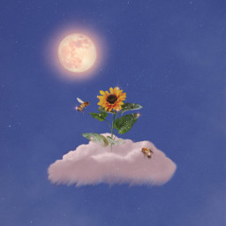 cloud sunflower moon bee sky heaven glitter shine bright fantasy background stars inspiration sweet cute nice beautiful awesome madewithpicsart heypicsart papicks creative simple freetoedit