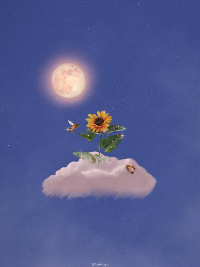 •𝐈𝐧 𝐜𝐚𝐬𝐞 𝐲𝐨𝐮 𝐧𝐞𝐯𝐞𝐫 𝐬𝐚𝐰 𝐚 𝐟𝐥𝐨𝐰𝐞𝐫 𝐢𝐧 𝐭𝐡𝐞 𝐡𝐞𝐢𝐠𝐡𝐭𝐬, 𝐡𝐞𝐫𝐞 𝐢𝐬 𝐨𝐧𝐞 𝐭𝐨 𝐛𝐫𝐢𝐠𝐡𝐭𝐞𝐧 𝐲𝐨𝐮𝐫 𝐝𝐚𝐲• 🌻☁️🌕🐝 #cloud #sunflower #moon #bee #sky #heaven #glitter #shine #bright #fantasy #background #stars #inspiration #sweet #cute #nice #beautiful #awesome #madewithpicsart #heypicsart #papicks #creative #inspiration #simple  @PA